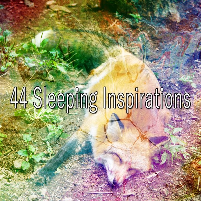 44 Sleeping Inspirations
