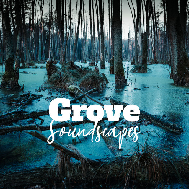 Grove Soundscapes