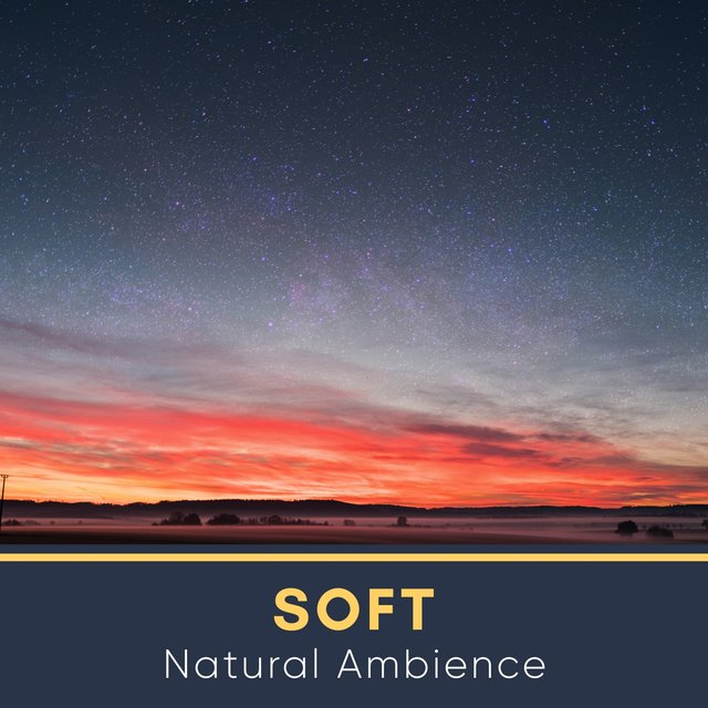 # 1 Album: Soft Natural Ambience