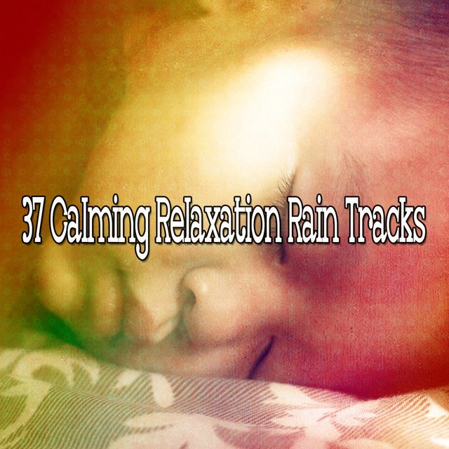 37 Calming Relaxation Rain Tracks