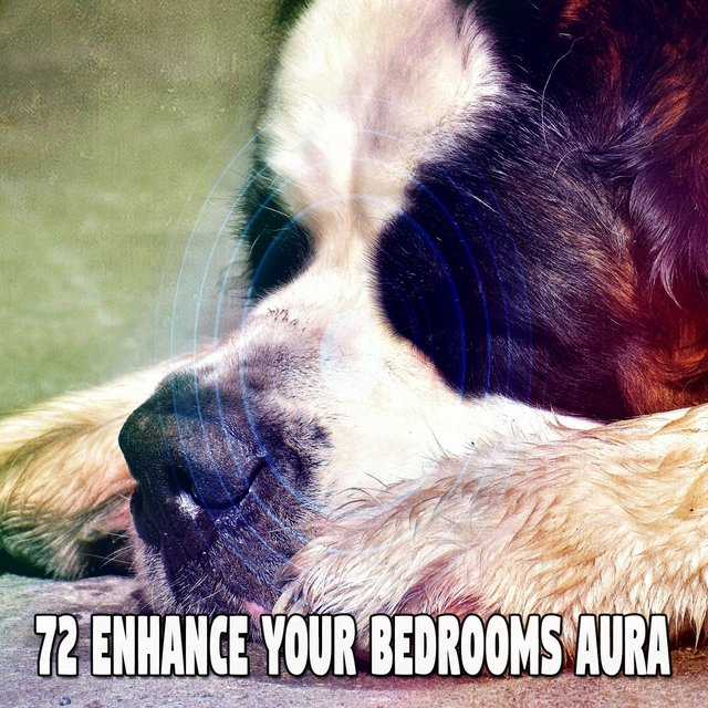 72 Enhance Your Bedrooms Aura