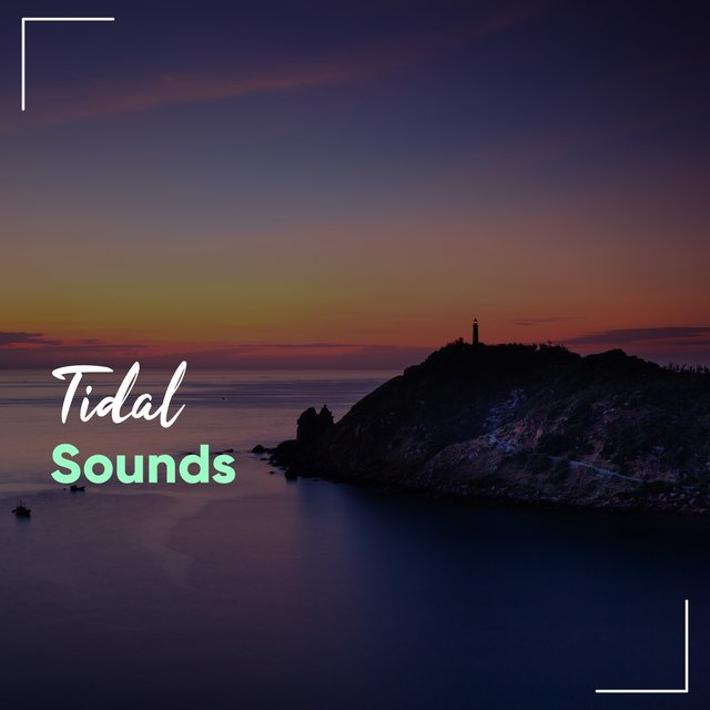 Calming Tidal Sounds