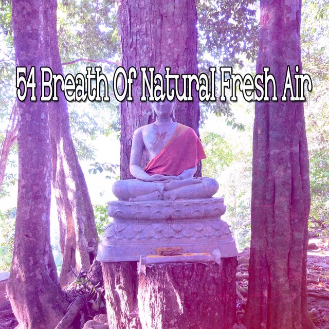 54 Breath of Natural Fresh Air