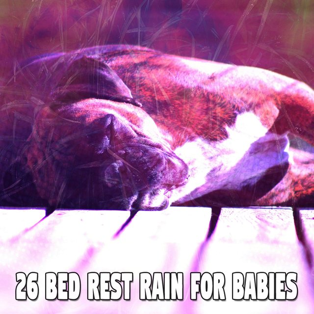26 Bed Rest Rain for Babies