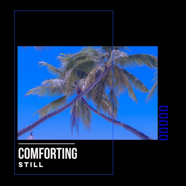 # 1 Album: Comforting Still