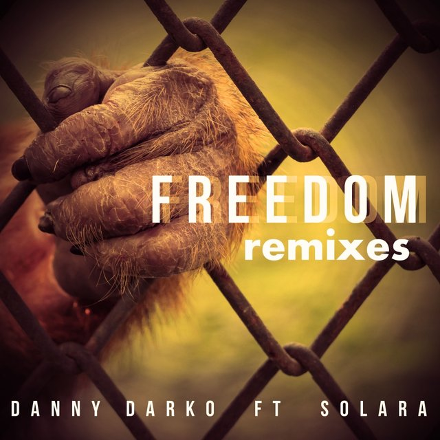 Freedom Remixes