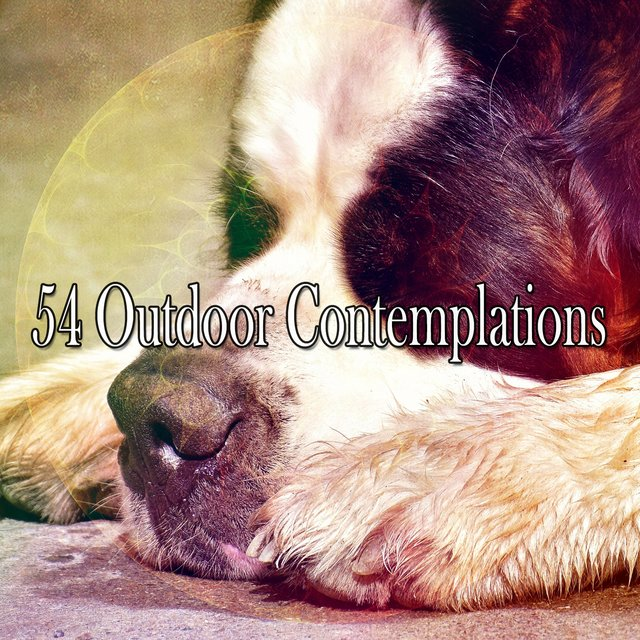54 Outdoor Contemplations