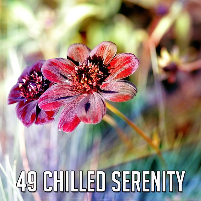 49 Chilled Serenity