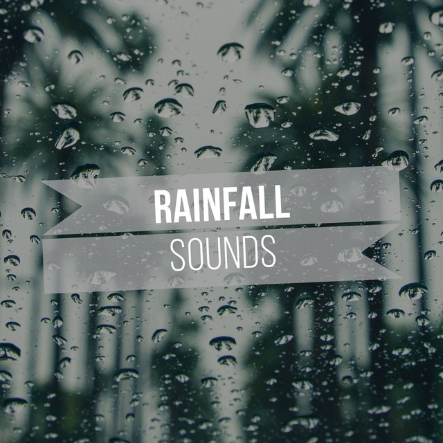 Soft Rainfall Storm Sounds