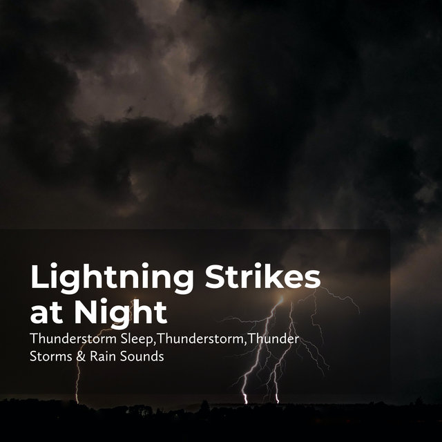 Lightning Strikes at Night