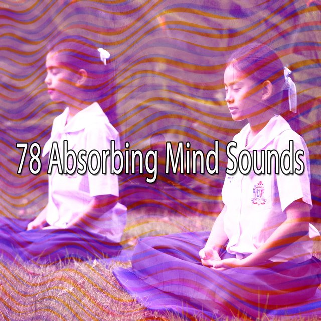 78 Absorbing Mind Sounds