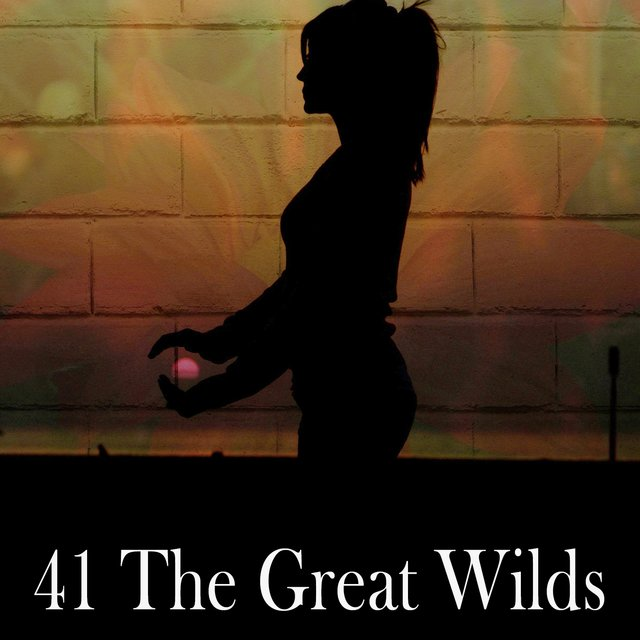 41 The Great Wilds