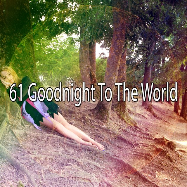 61 Goodnight to the World