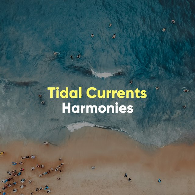Meditative Tidal Currents Harmonies