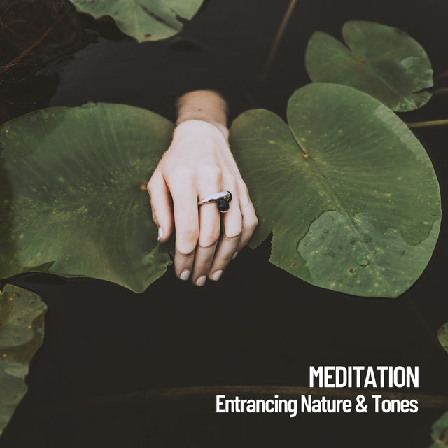 Meditation: Entrancing Nature & Tones