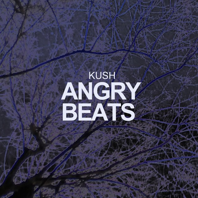 Angry Beats