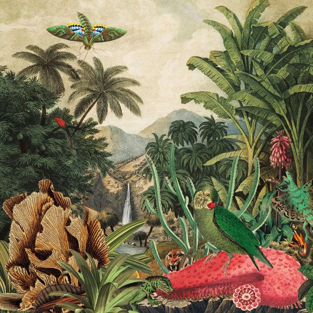 Cover art for album Imaginary Island Music, Vol. 1: Canary Islands by LAGOSS