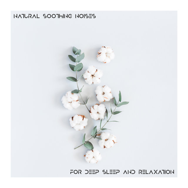 Natural Soothing Noises for Deep Sleep and Relaxation