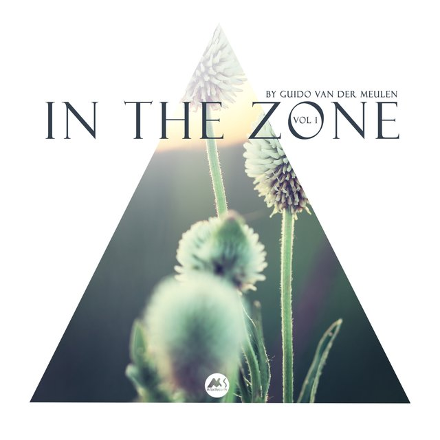 In the Zone Vol 1