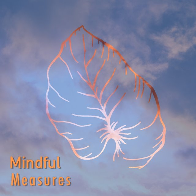 # 1 Album: Mindful Measures