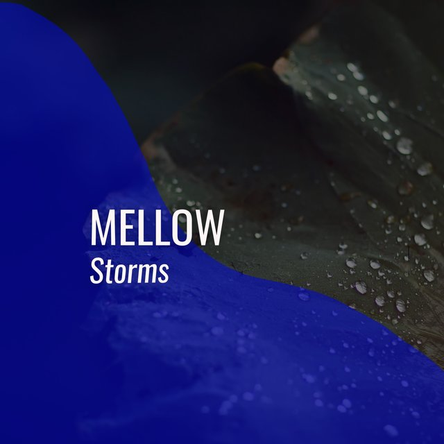 # 1 Album: Mellow Storms