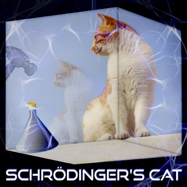 Schrödinger's Cat – Music for Easy Study, Stimulate Brain Activity, Focus on Learning, Study Skills, Improve Memory and Concentration, Brain Exercises, Science and Discovery, Creative Thinking