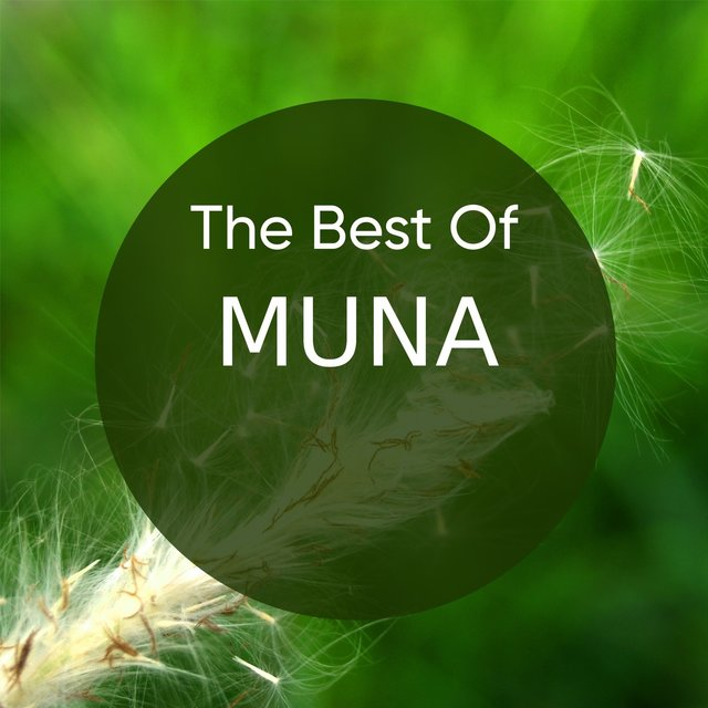 The Best of MUNA