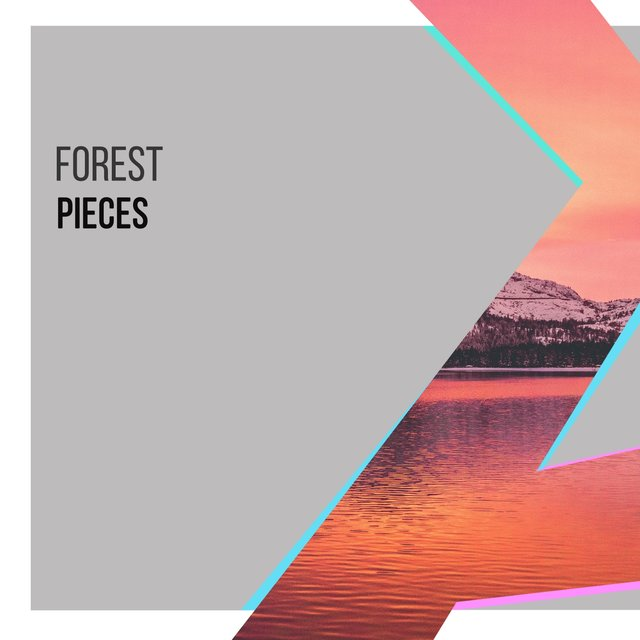 Soothing Sleepy Forest Pieces