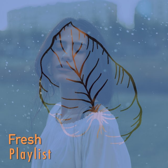 # 1 Album: Fresh Playlist