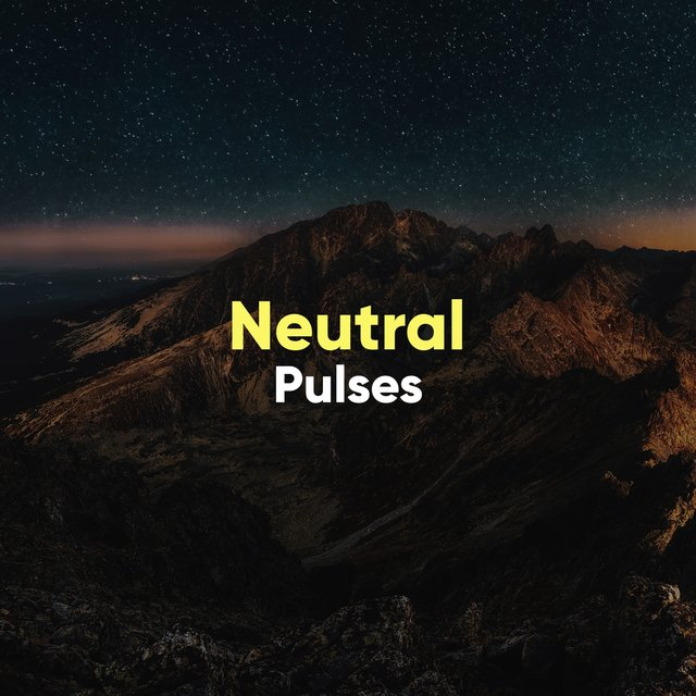 # 1 Album: Neutral Pulses