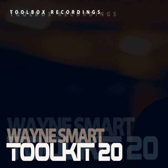 Toolkit Vol 20 (Mixed by Wayne Smart)