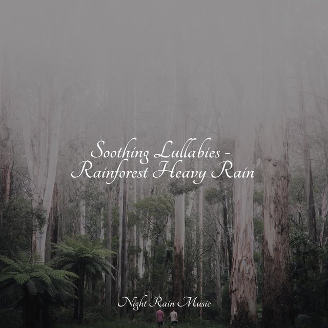 Soothing Lullabies - Rainforest Heavy Rain