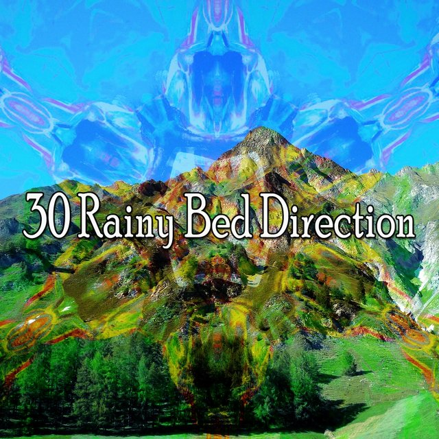30 Rainy Bed Direction