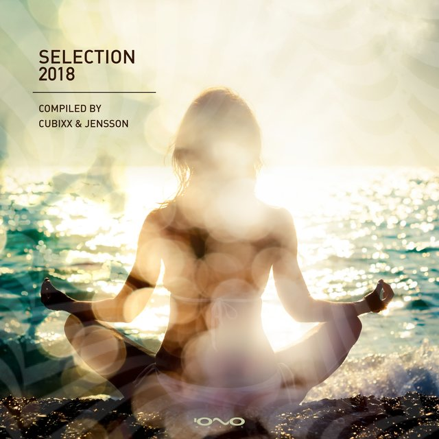 Selection 2018 (Compiled by Cubixx & Jensson)