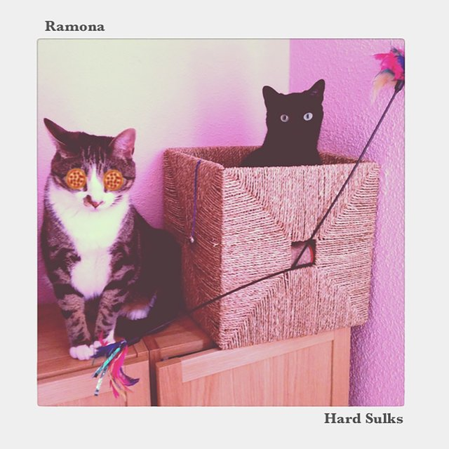 Ramona/Hard Sulks (Split)