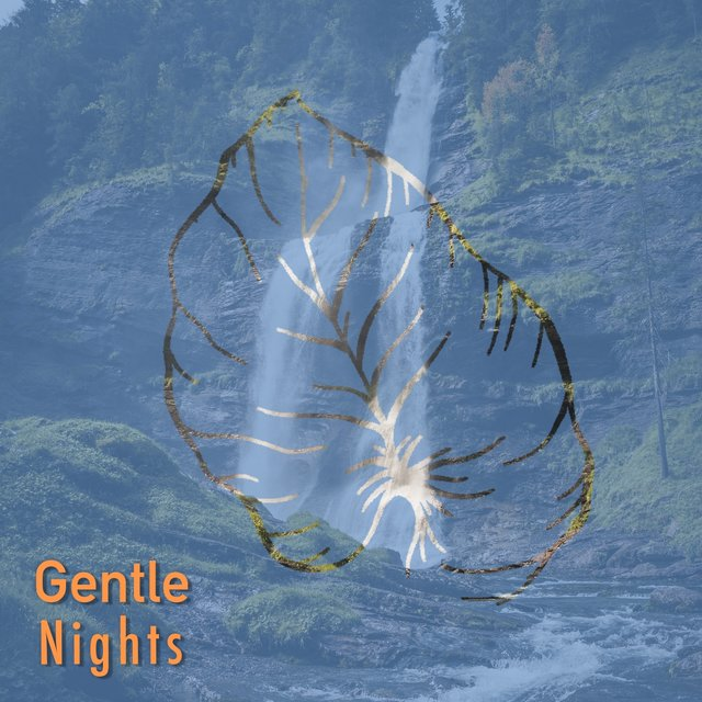 # Gentle Nights