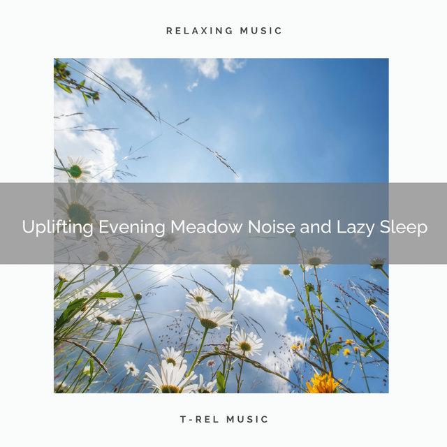 Uplifting Evening Meadow Noise and Lazy Sleep