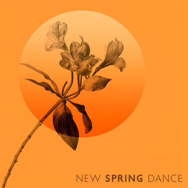 New Spring Dance (Jazz for Dancers)