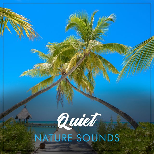# Quiet Nature Sounds