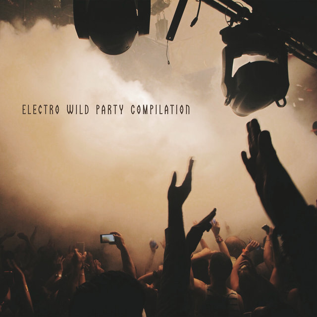 Electro Wild Party Compilation - Rhythmic Chillout Music Perfect for a House Party