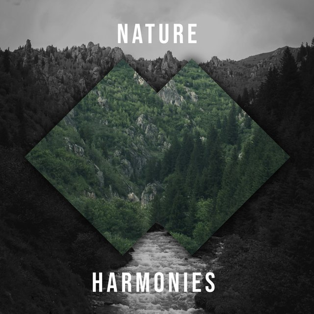 Gentle Natural Nature Harmonies