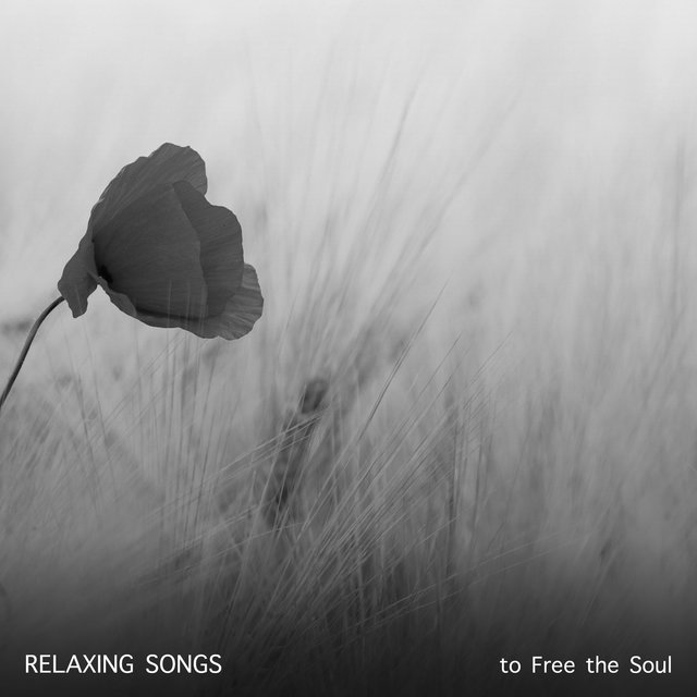 19 Relaxing Songs to Free the Soul
