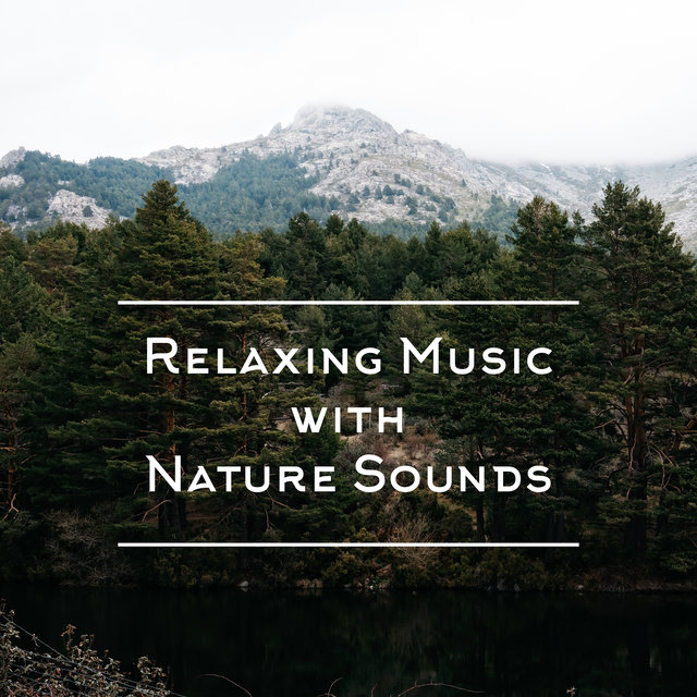 Relaxing Music with Nature Sounds: 15 Stress Relief Songs, Calm Background Music, Tranquil Sleep, Morning Meditation