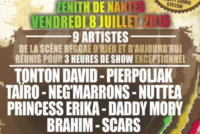 Tonton David, Pierpoljak, Taïro, Negmarrons, Nuttea, Princess Erika, ... - Reggae Party Tour