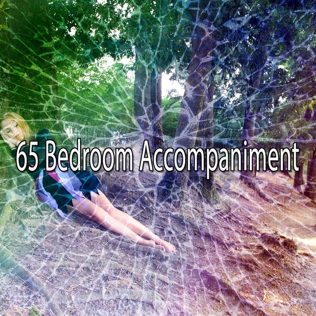 65 Bedroom Accompaniment