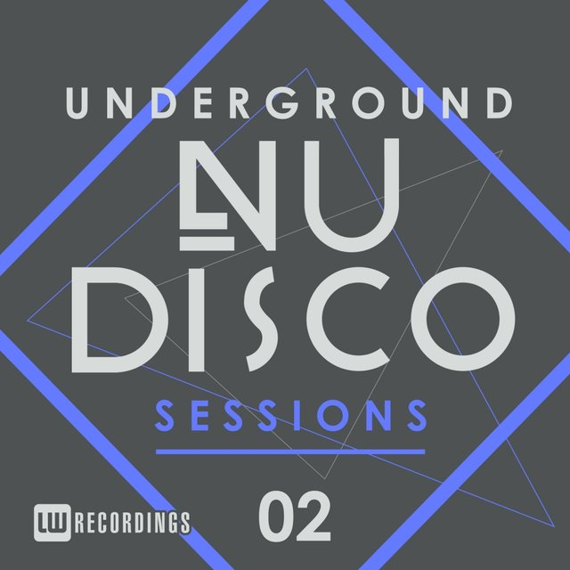 Underground Nu-Disco Sessions, Vol. 2