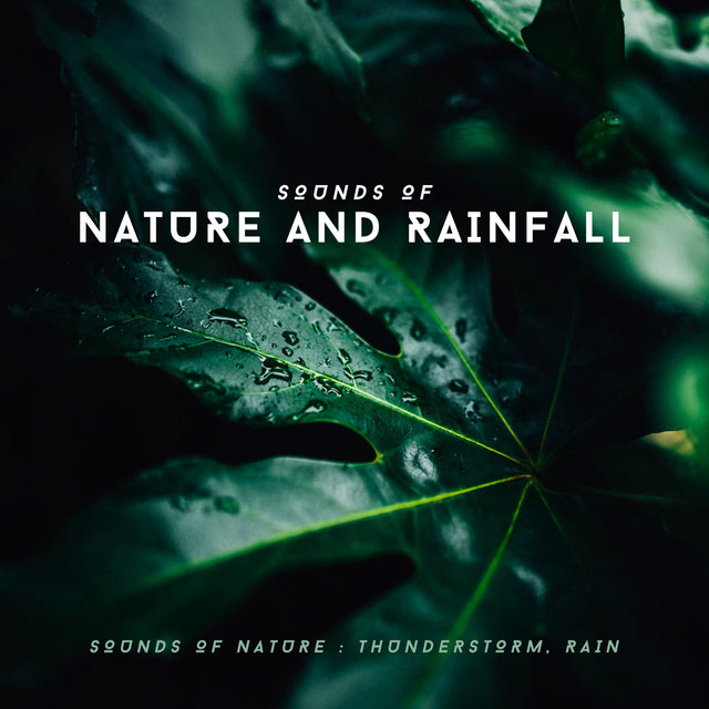 Sounds of Nature and Rainfall