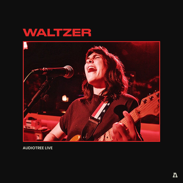 Waltzer on Audiotree Live