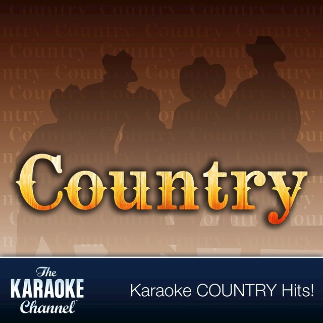 The Karaoke Channel - Country Hits of 1993, Vol. 25