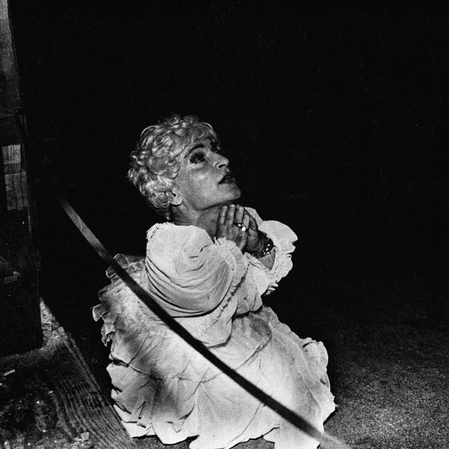 Cover art for album Halcyon Digest by Deerhunter
